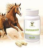 Alpvital Stutenmilch - Haut Magen Abwehrkräfte Immunsystem Stoffwechsel Detox
