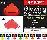 van Hoogen Poudre Lumineuse Fluorescente avec Distributeur 100 g