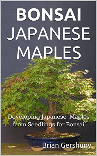 BONSAI JAPANESE MAPLES: Developing Japanese Maples from Seedlings for Bonsai (Okami Gardens Bonsai Series Book 1) (English Edition)