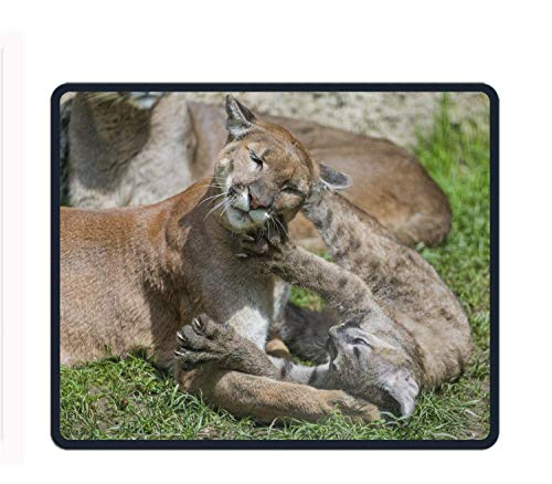 Animal Cougar Cats Mouse Pad Non-Slip Rubber Base Mousepad for Laptop, Computer & PC -