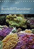 Bunte Riffbewohner - Fische, Anemonen und noch viel mehr (Tischkalender 2017 DIN A5 hoch): Tropische Riffe bieten eine große Vielfalt an Lebewesen und Farben (Planer, 14 Seiten ) (CALVENDO Tiere)