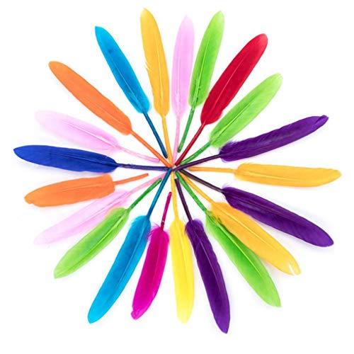 heliltd 300pcs Bunte Federn, Federn Dekoration, ideal für Anzüge, Hüte, Inneneinrichtungen, Multicolor