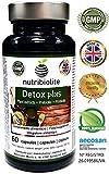 Detox Plus | Drenante Dimagrante Diuretico Depurativo del Fegato Antiossidante Migliora la Digestione. Integratore Simbiotico Naturale con Probiotici + Prebiotici + Estratti Vegetali Senza Glutine