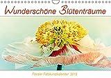Wunderschöne Blütenträume (Wandkalender 2019 DIN A4 quer): Florale Fotokunstbilder von wunderschönen Blumen und Blüten (Monatskalender, 14 Seiten ) (CALVENDO Natur)