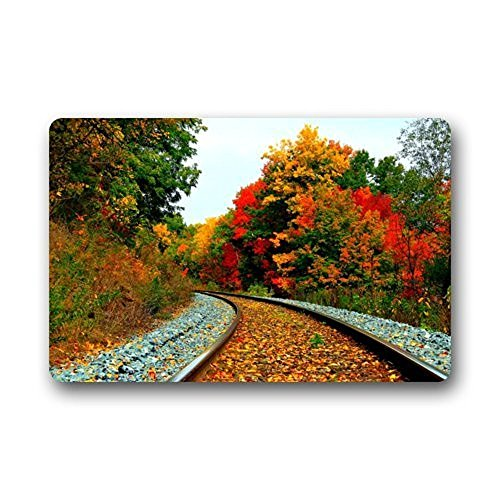 fringcoook Hi,Doormat Beautiful Train Tracks Railroad Non-Slip Rubber Door Mat Floor Doormats 23.6 x 15.7 Inches (Soft Touch Track Mat)