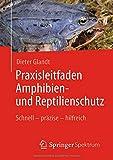 Praxisleitfaden Amphibien- und Reptilienschutz: Schnell - präzise - hilfreich - Dieter Glandt