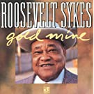 Gold Mine by SYKES (2005-05-03)