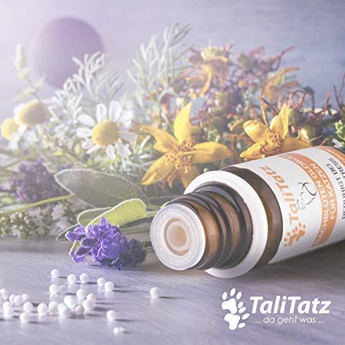 Bachblüten Globuli von TaliTatz Beruhigungsmittel Anti-Stress Notfall Globuli Hilft bei Katzenangst Stress – Rescue ohne Alkohol