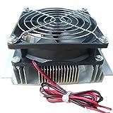 Delicacydex XD-2024 Módulo de refrigeración Semiconductor Kit de Agua fría Mini Fish Tank Chiller 15 litros Refrigerador pequeño - Negro