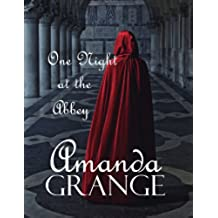 One Night At The Abbey (English Edition)
