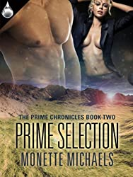 Prime Selection (The Prime Chronicles Book 2) (English Edition)