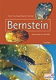 Bernstein: Fossile Harze aus aller Welt