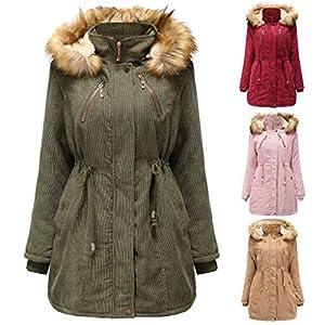 AmyGline Jacke Damen Winter Jacke Parka Mantel Lange Winterjacke mit Kapuze Warm Gefüttert Plüsch Daunenjacke Steppjacke…