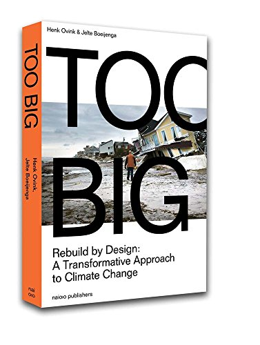 Too Big: Rebuild by Design's Transformative Response to Climate Change: Rebuild by Design: a Transformative Approach to Climate Change