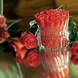WeddingTree Premium Seifenblasen Set in rot- 48 teilig mit Herzgriff - herzallerliebst für Hochzeit Taufe Geburtstag Goldene Hochzeit Verlobung Valentinstag Gastgeschenk Party - 5