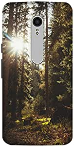 The Racoon Grip printed designer hard back mobile phone case cover for Motorola Moto X Style. (forest sun)