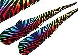 Flames N Games FUNKY® Pro Socken-Poi (ZEBBRA) Sock Poi *keine Bälle inkl. Swinging Poi und Spinning Pois! Pois für Anfänger und Profis.