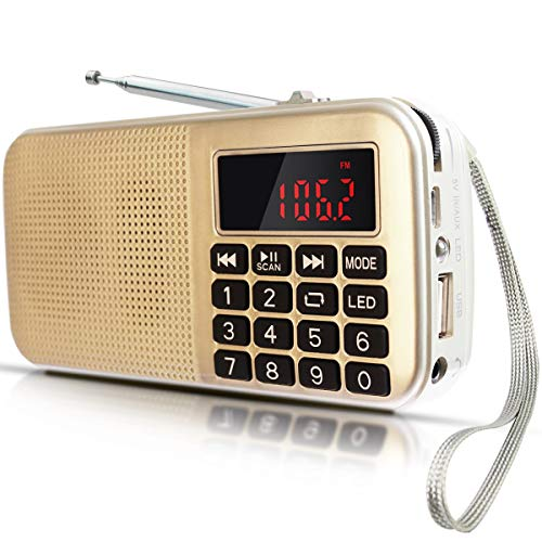 Radio L-558 FM SD USB MP3 PORTÁTIL Recargable