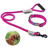 Touchdog Hundeleine mit Halsband und Clip, Hundegeschirr aus Nylon mit bequemem geschäumtem Griff, verstellbar,10-20KG, Pink