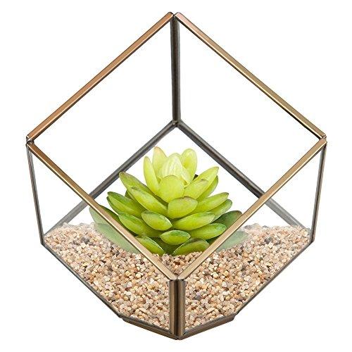 Sotoboo Moderne Terrarium Glas Klar Pyramid Tabletop Geometrische Polyeder Box, Deko Sukkulenten Halter Farn Moos Blumentopf Box, Geschenk, Farblos, A
