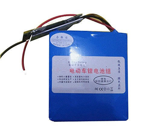 China Selection 24V 30AH LiFePO4 Lithium Eisenphosphat Batterie mit BMS Ladegerät für Elektrofahrrad (22cm*16cm*11cm)