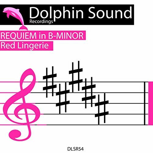 Requiem in B-Minor (Original Mix)