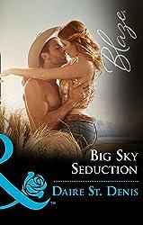 Big Sky Seduction (Mills & Boon Blaze)