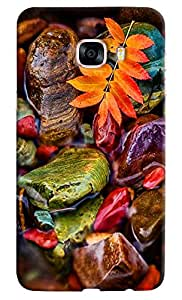 Omnam Beautiful Stones Color Effect On Water Printed Designer Back Cover Case For Samsung Galaxy C5