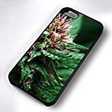 Bud Weed Phone Cases - Best Reviews Guide