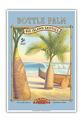 Flaschenpalme -'Aloha' Samenkörner - Big Island Saatgut-Unternehmen - Die Exoten des Big Island - Vintage Retro Saatpaket von Kerne Erickson - Kunstdruck - 33cm x 48cm