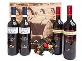Geschenkbox Weine Markenländer von Moncaro - Wein-Geschenkpakete zu Weihnachten – Code 189