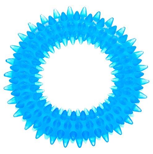 Creative Pet Group Murphy & ROXY Pet 's ungiftig, haustierfreundlich Dental Ring, Blau, Mittel (Stiche-bisse)