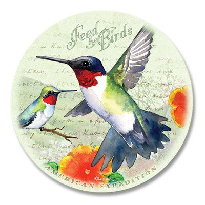 5 Piece Hummingbird Postcard Stone Coaster Set by American Expedition Hummingbird Coaster