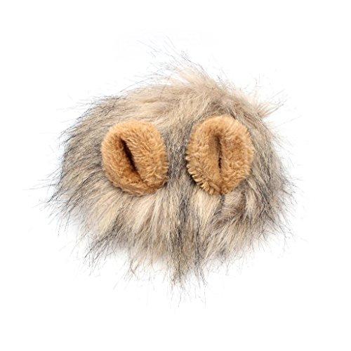 edealing (TM) Haustier Hund Katze Lustige Emulation Lion Haar Mane Ohren Kopf Cap Herbst-Winter-Dress Up Kostüm Muffler Schal (Katze Kostüme Lion)