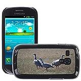 Grand Phone Cases Bild Hart Handy Schwarz Schutz Case Cover Schale Etui // M00141005 Cape Barren Gänse Gänse Tier // Samsung Galaxy S3 MINI i8190