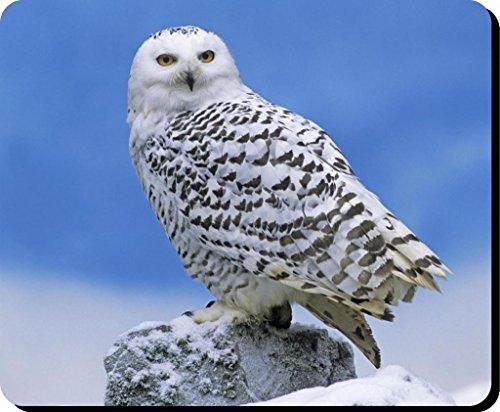 Schnee-Eule Vogel Mauspad 35