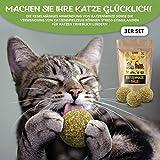 3x Katzenminze Ball | Naturprodukt | Besteht aus 100% natürlicher Katzenminze | Entspannung für Katzen | Katzenspielzeug | Fördert den natürlichen Spieltrieb | Unterstützt die Zahnpflege | 1A Qualität - 2