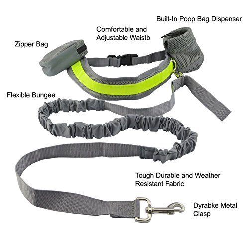 Hands-Free-Running-Dog-Lead-Adjustable-Waist-Lead-with-pouchDog-Bungee-Canicross-Walking-Belt-jogging-Hiking-leash
