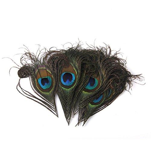 pfau-federn-fur-kunsthandwerk-maske-hut-10-12cm-10-stk