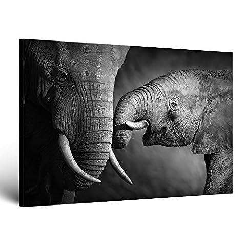 ge-Bildet Bild auf Leinwand MIT SOMMER RABATT Elefanten - schwarz weiß tier bilder - 70x50 cm einteilig - direkt vom Hersteller aus Deutschland