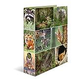 Herma 7202 Karton Motivordner DIN A4, Serie Tiere, Design Waldtiere, 70 mm breit, mit Innendruck , 1 Ordner