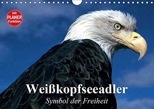 Weißkopfseeadler. Symbol der Freiheit (Wandkalender 2019 DIN A4 quer): Die königlichen Raubvögel und Götterboten aus der Nähe betrachten (Geburtstagskalender, 14 Seiten ) (CALVENDO Tiere) -