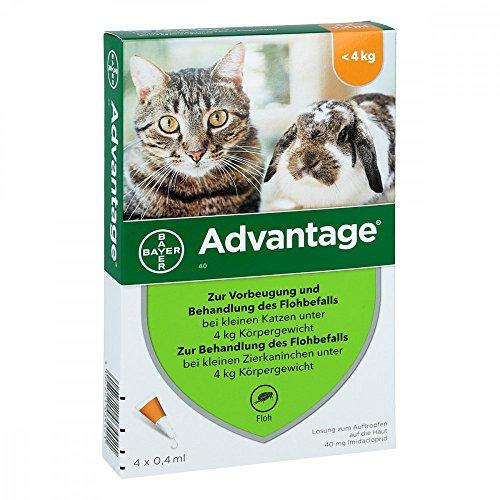 Bayer Vital GmbH Advantage 40 mg für kl.Katzen und kl.Zierkaninchen 4X0.4 ml