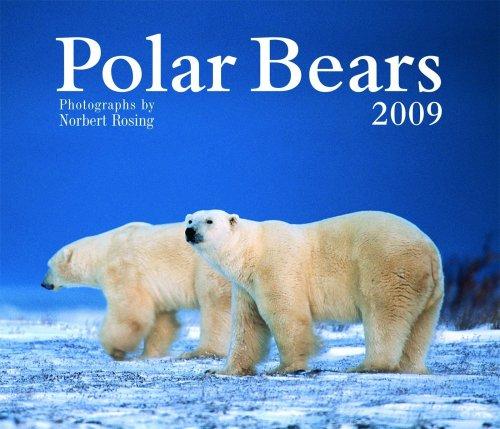 Polar Bears 2009