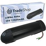 Trade-Shop Elektro Fahrrad Akku 36V 11600mAh 418Wh Trinkflasche Flaschenhalter Bottle Battery für e-Bike Motor 200W - 350W mit abschließbarer Halterung und 2A Ladegerät