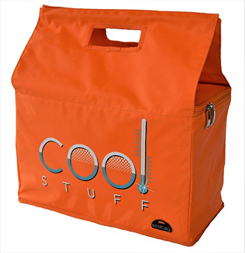 Cool Stuff Isolierte faltbare Kühltasche Lebensmittel transport in Orange