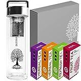 Daily Fitness Tea Set, Thermo Bottle 400 ml, Trinkflasche Glas mit Sieb, Deckel silber, Geburtstag Tee Geschenk Set Angebot für Frauen Männer