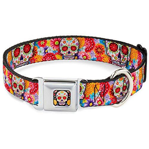 buckle-down-11-17-sugar-skull-starburst-white-multi-color-dog-collar-medium