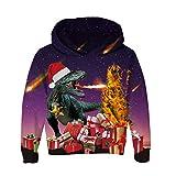 RAISEVERN Unisex Kinder Drachen Dinosaurier Mit Kapuze Hoodies 3D Gedruckt Jungen Mädchen Weihnachten Pullover Fleece Hoody Sweatshirt 3-10 Jahre
