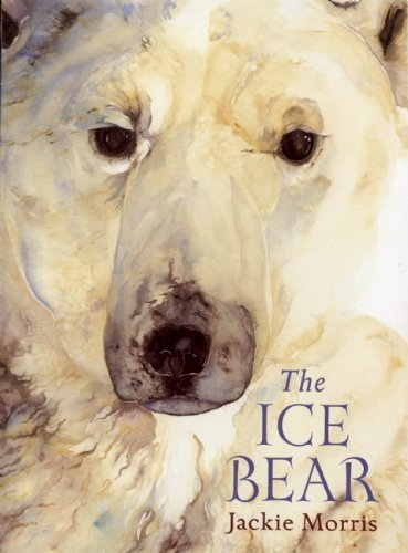 The Ice Bear: Written by Jackie Morris, 2014 Edition, (PB Reissue) Publisher: Frances Lincoln Children's Books [Paperback]